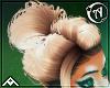 """""""   Randa   Hair"""