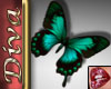 JLD~Butterfly Turquoise