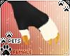 [Pets] Zorro | claws