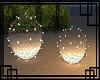 💀 Eveling Lights