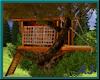 (A) Hip Tree house