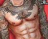👑L►EG Full TT Body