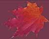 {K}Falling Leaves