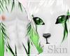 K Tiger Fur Skin