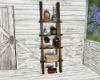 Garden Ladder Shelves