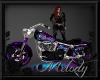 ~Night Fairy Bobber Bike