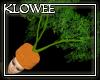 Carrot Hat (F)