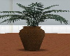 brown vase w plant