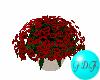 ~FDF~ Red Flower