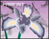 (*Par*) Vector Iris