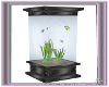 Aquariums modern
