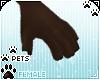 [Pets] Kimi | claws