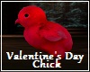 Valentine's Day Chick