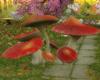 Mushroom + pose spot