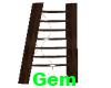 [g] western ladder