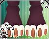 [Pets] Quin   paws