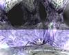 Drow Spider Drop Lair