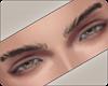 !! Aeron Eyebrows