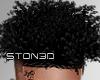 Wild Curls '19