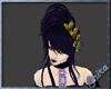 Violet Black Fairy