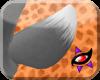 K~ Kiey Tail V1