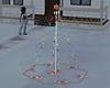 Christmas-Tree-Outdoor