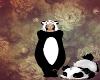 Cute panda *.*