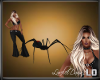[LD] PET SPIDER RGT