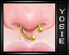 ~Y~Gold Nose Septum