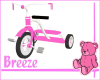 *B BabyGirl Tricycle Toy