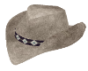 Wild Horses Cowgirl Hat