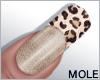 *M* Shelbi Nails