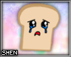 :S Toast Pet
