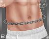 Belt Silver M5a Ⓚ