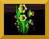 Daffodils avatar
