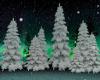 !T! Room | Winter Trees