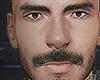 Ragnark brows/beard