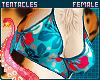 🌺 Pua'a | Bikini Top