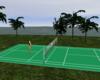Animated Badminton Court