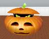 Halloween~Pumpkin Cat