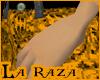 La Raza - Latino Pants