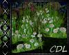 !C* L Grass / Flowers