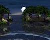 !Paradise Cove