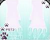 [Pets] Jura | feet