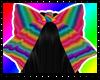 Rainbow Bow