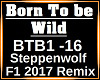 Born To be Wild Remix