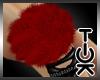 [Tok] Noelz Red Bangle R