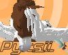 Pintaloosa Pegasus