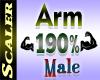 Arm Resizer 190%