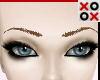 Dk Blond Realistic Brows